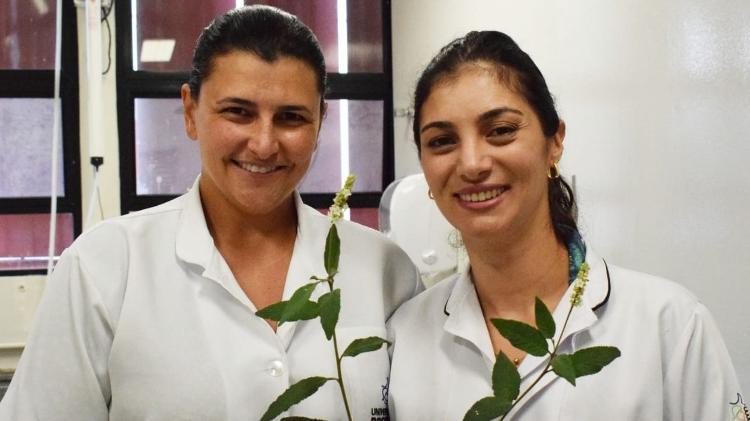 A bióloga Jéssica Martim (à esquerda) e a professora orientadora Dra. Thais Andrade Costa-Casagrande durante um estudo de mestrado sobre os efeitos da Cordia verbenacea em feridas exacerbadas pelo diabetes - Discovery / Jéssica Martim