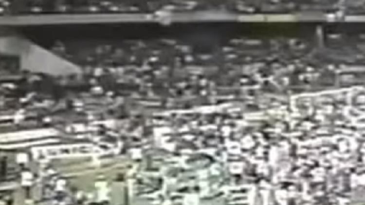 São-paulinos conquista o gramado do Morumbia para comemorar o título Libertadores - Reprodução