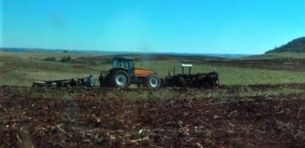 A empresa destrói a colheita do MST para fornecer alimentos em uma pandemia - Balaio do Kotscho
